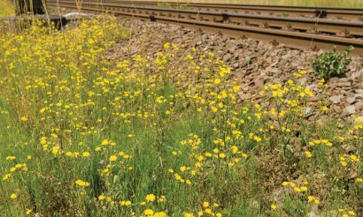 Making ProRail more sustainable